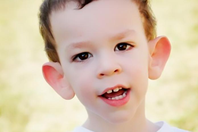 Transtorno do espectro autista dasafios e possibilidades nas salas de recursos 9